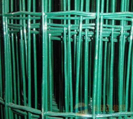 东北荷兰网/电焊网养殖网农场网厂家批发价格低廉