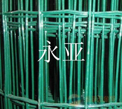 四川荷兰网包塑网厂家直销