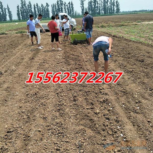 大蒜种植机械