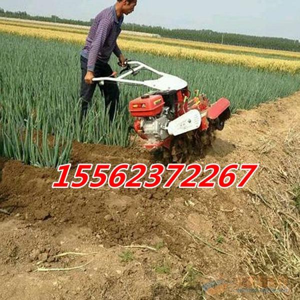 邵阳186柴油封姜机 生产效率高
