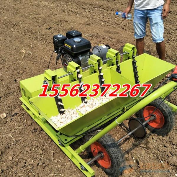 新型大蒜播种的机器
