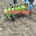新型大蒜播种机 汽油机带动种蒜机图片 正规厂家