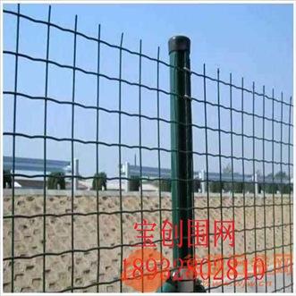 山东荷兰护栏网厂家 山东荷兰护栏网产品工艺 山东荷兰