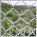 不锈钢勾花网厂家 不锈钢勾花网用途 不锈钢勾花网产品销售