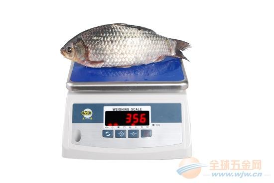 上海亚津食品包装电子防水称/30公斤防水秤特价包邮