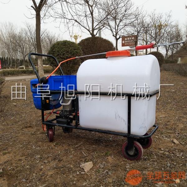 推荐自动回管打药机105升 手推式杀虫机 电动大棚果园杀虫喷雾器