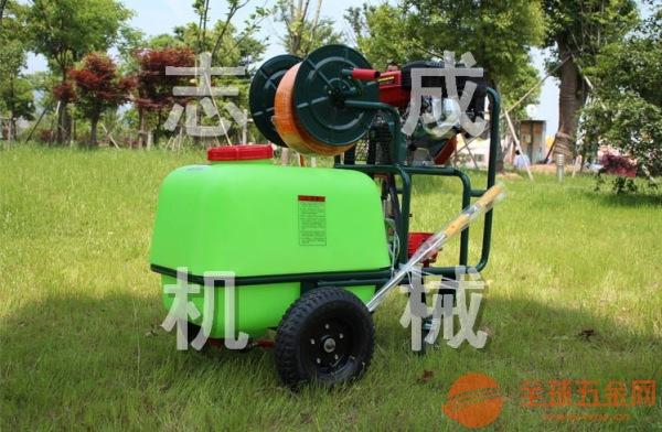 厂家供应100L汽油高压打药机场地灭菌消毒杀虫机