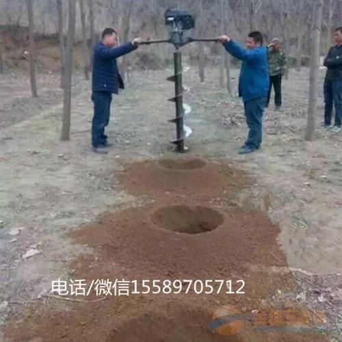 手提绿化挖坑机 普定县电杆坑挖洞机