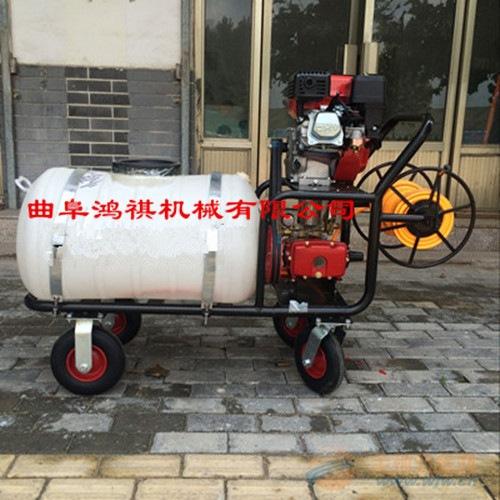 汽油喷雾打药机 动力强劲喷雾机普兰店