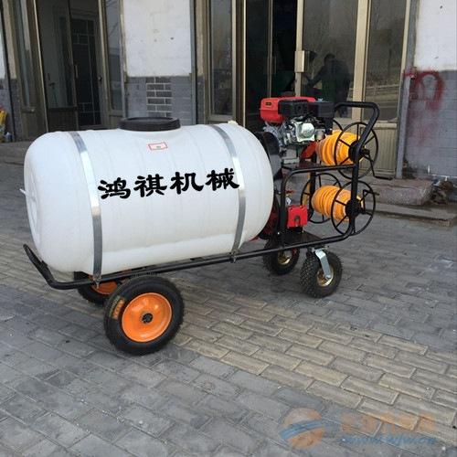 农用手推式喷雾打药机 汽油框架打药机旅顺口区