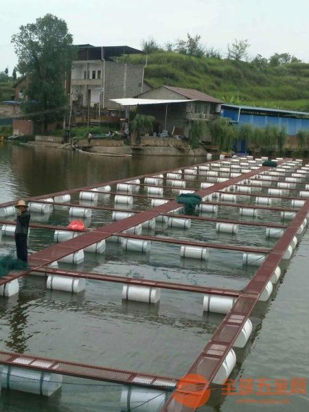 沂水县网箱养殖鲈鱼哪里便宜