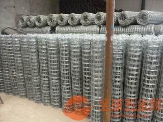 拓通圈玉米网 镀锌玉米网 煤矿防护网 煤矿支护网