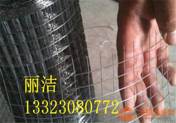 寖塑电焊网编制特点 寖塑电焊网市场价格 寖塑电焊网产品材质