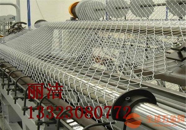 勾花护栏网产品特色丽洁生产 勾花护栏网产品用途