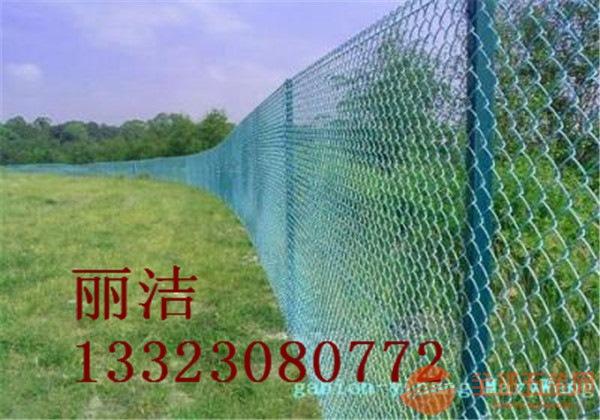 丽洁勾花护栏网产品特色 丽洁勾花护栏网产品介绍