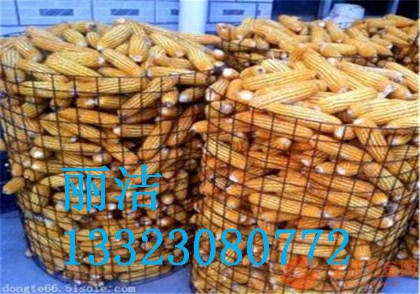 圈玉米围网产品材质 圈玉米围网产品特点 圈玉米围网厂