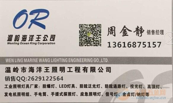 防水防汛抗洪应急灯RJW7101/LT 海洋王厂家现货