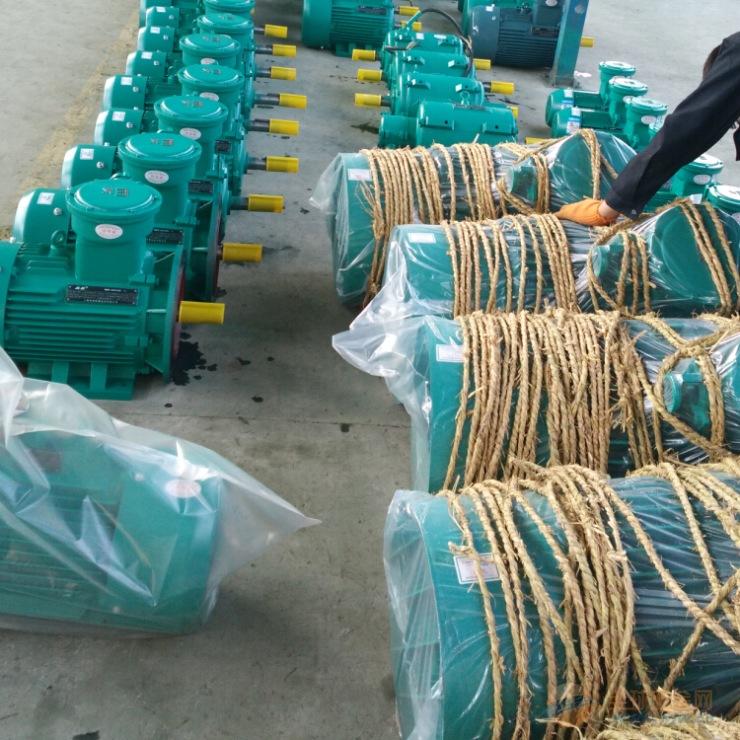 上海高效防爆电机 YB3-250M-4-55KW隔爆型电动机