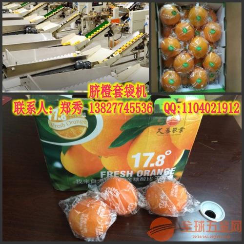 柑桔包装机械