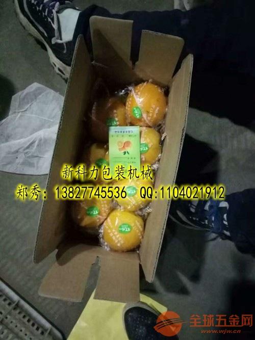福建芦柑包装机
