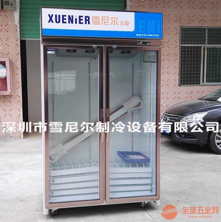 中雪牌冷柜 饮料牛奶冷藏柜深圳LG4-518F