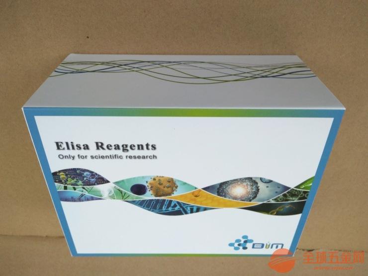 小鼠s腺苷同型半胱氨酸(SAH)ELISA试剂盒