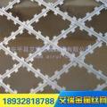 监狱隔离网钢网墙_专业定做热镀锌刀片防盗监狱钢网墙