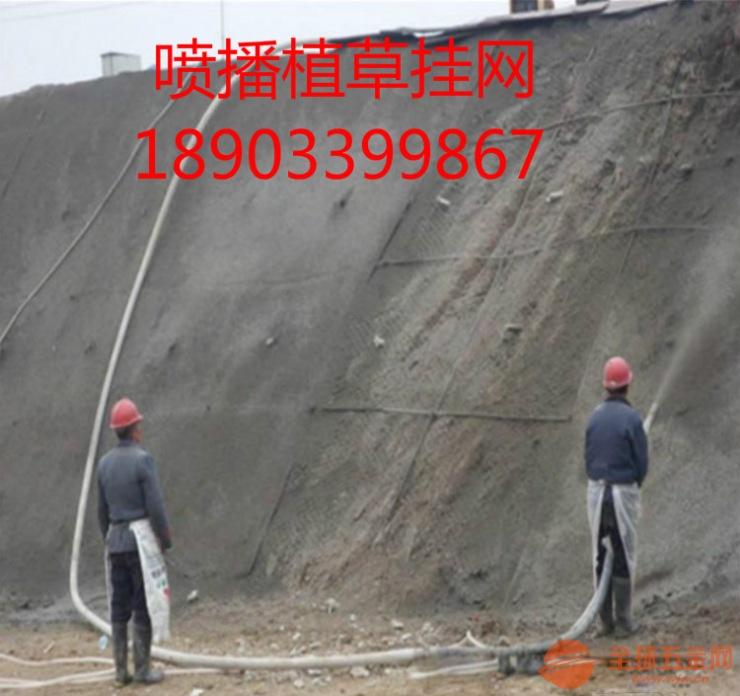 青海高速护坡勾花网*生态绿化边坡植草铁丝网 找正规丝