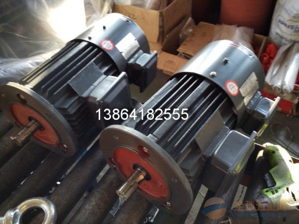 珠海YVF2电机|销售佛山YVF2电机|肇庆YVF2电机立式
