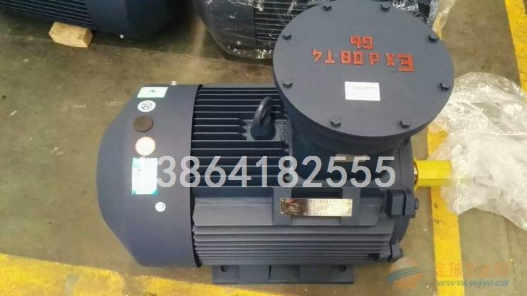 滁州YB3电机|销售滁州YB3-280M-6-55电机