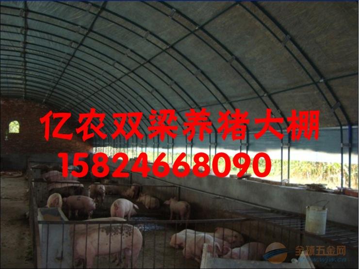 养猪大棚养鸡大棚食用菌大棚各种大棚配件