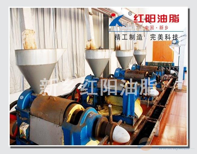新乡红阳供应南瓜籽榨油机,南瓜子榨油设备
