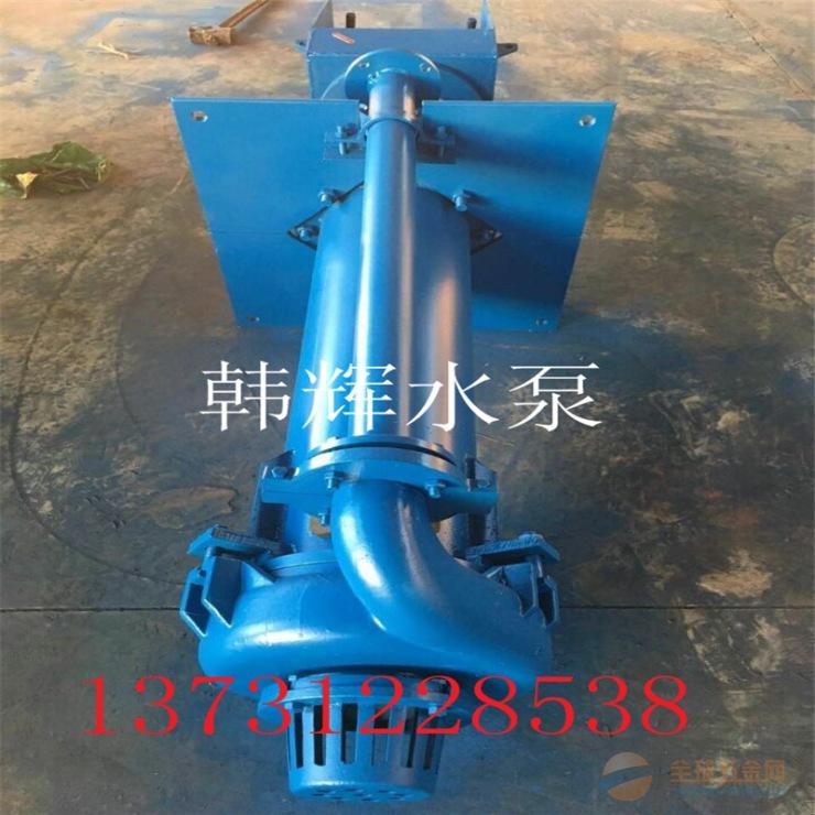 渣浆泵 立式泵 韩辉水泵