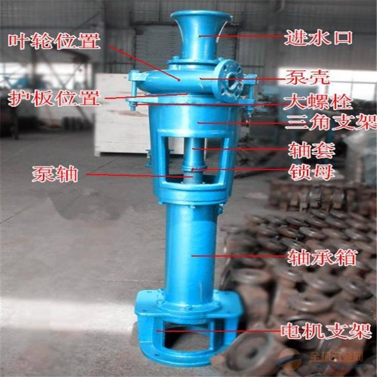 输送大颗粒污水泥浆泵PNL立式泵