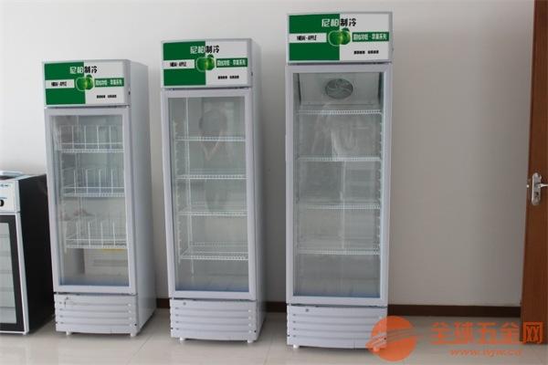 上海 啤酒饮料柜批发