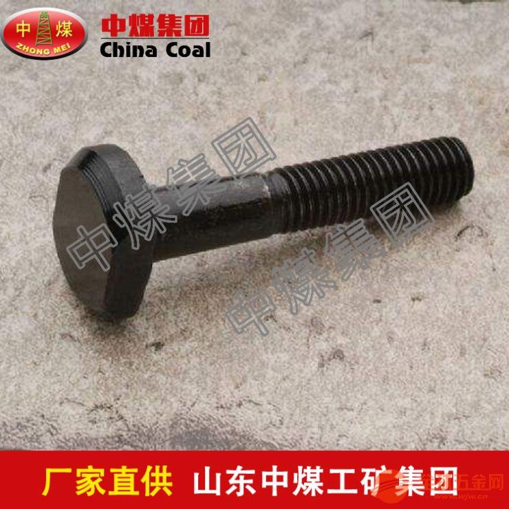 T型螺栓 T型螺栓厂家 T型螺栓价格