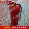 MFZ/ABC1干粉灭火器价格,干粉灭火器生产商