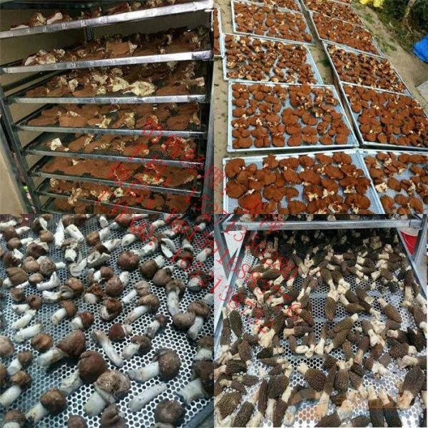 食用菌烘干机18格 香菇豆角金针菇烤箱农产品通用烘干机烤箱
