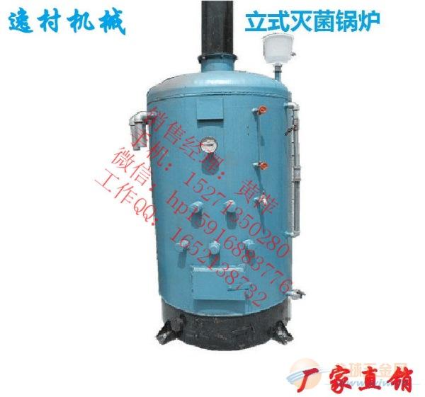 灭菌锅炉 厂家直销 蘑菇菌袋常压锅炉香菇平菇木耳产蒸