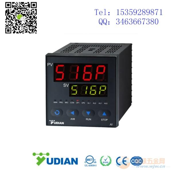 程序段温控器 AI-516P