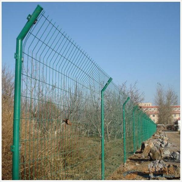 赫鹏现货供应 双边丝护栏网 圈地绿色铁丝围栏网