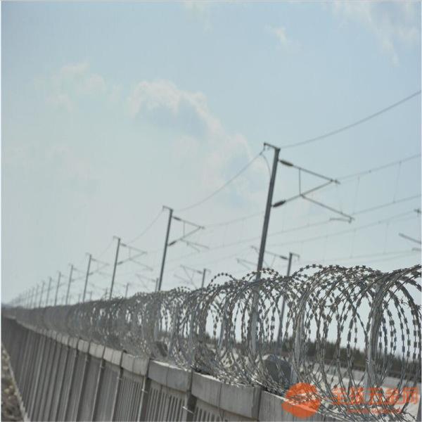 刺绳、刺绳护栏网、刺丝隔离栅 铁蒺藜 刺绳隔离栅