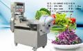 多功能切菜机 小型立式切菜机 南京旭众多功能切菜机
