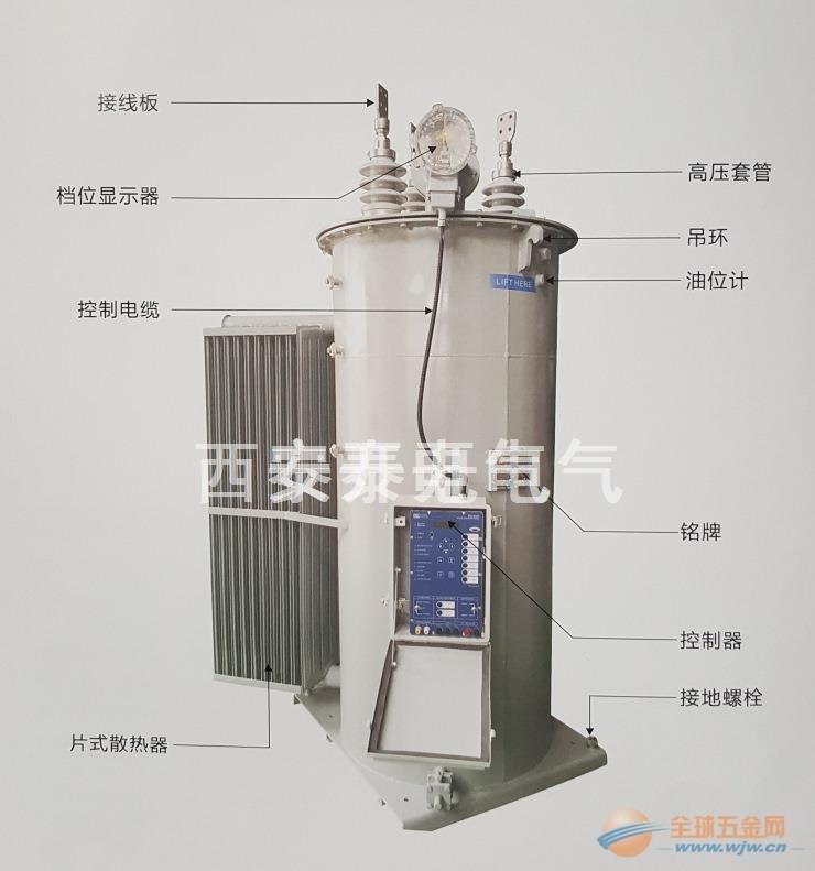 10KV单相自动调压器 10KV单相馈线调压器32档调节