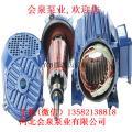 2CY12/2.5移动式圆弧泵 2CY12/2.5润滑泵