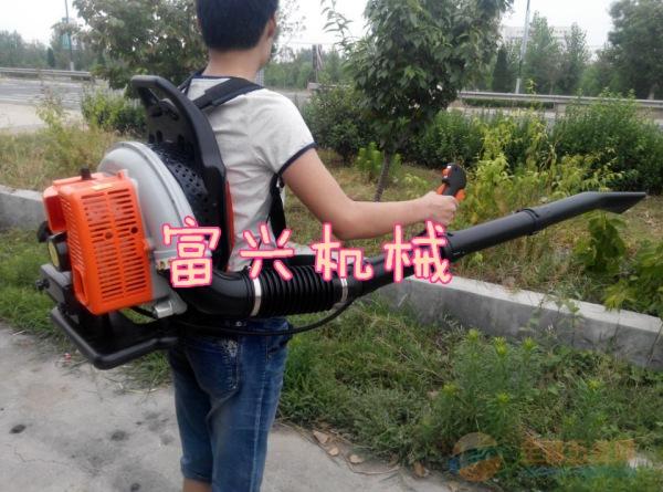 米脂县多功能汽油吹雪机背负式清理机吹雪机