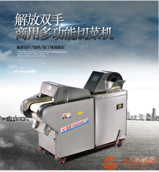广州胡萝卜切丝机 白菜切丝机