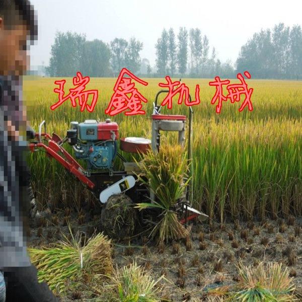 寿宁县 三行四行收割机 稻麦玉米秸秆收割机