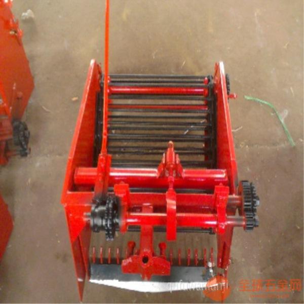 紫薯挖掘机 洋芋收获机 挖掘大蒜的机器厂家