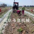 河南薯类收获机 紫薯挖掘机 花生收获机厂家